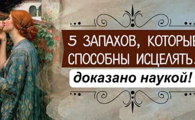 5 природных запахов против болезней