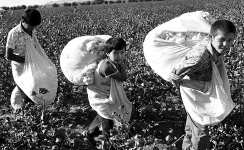 Каким образом школьников приучали к труду во времена СССР